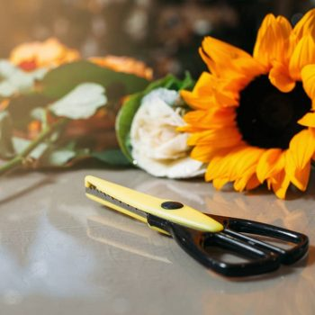 Black scissors on grey table against sunflower